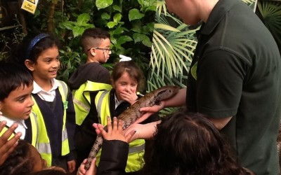 FS2 Visit the Tropical Butterfly House